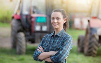Landwirtschaft: Absoluter und relativer Deckungsbeitrag in der Bullenmast